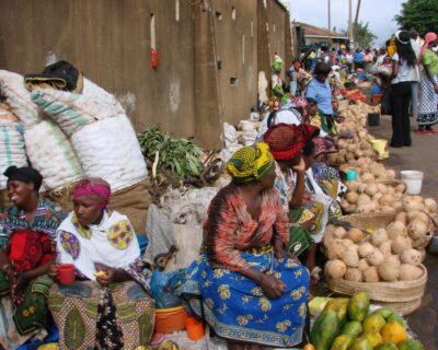 Charles Zimmermann: Por que existem países pobres e países ricos?
