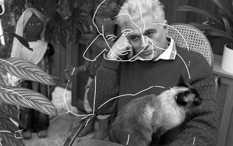 A gata de Derrida: breve tentativa de abordar a questão dos direitos dos animais (parte 2)